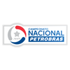 First division of Chile  (Primera División del Fútbol Profesional Chileno)