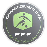 Fourth division of French football (Championnat de France amateur)