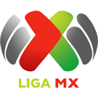 First division of Mexico (Liga MX)