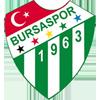 Bursaspor Kulübü Dernegi